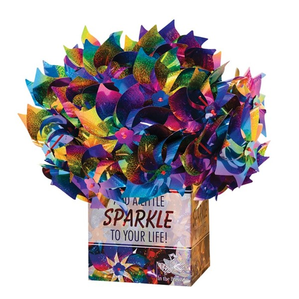 View Rainbow Whirl Pinwheel 48 PC POP Display