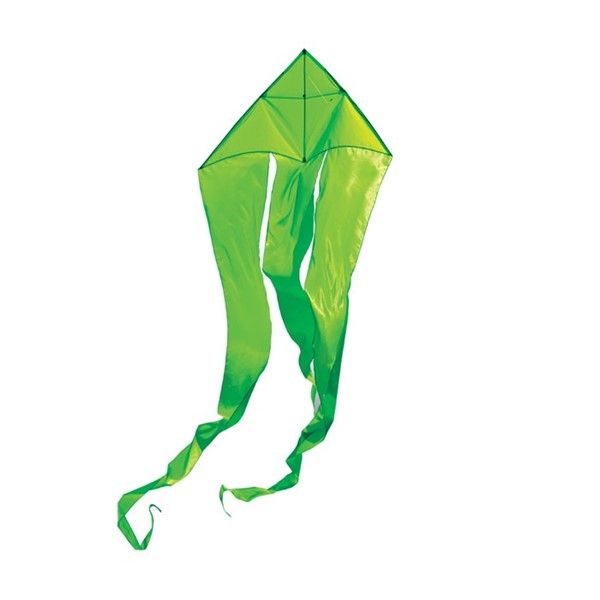 "View Green 52"" Wave Delta Kite"