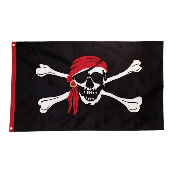 View I'm a Jolly Roger 3x5 Grommet Flag