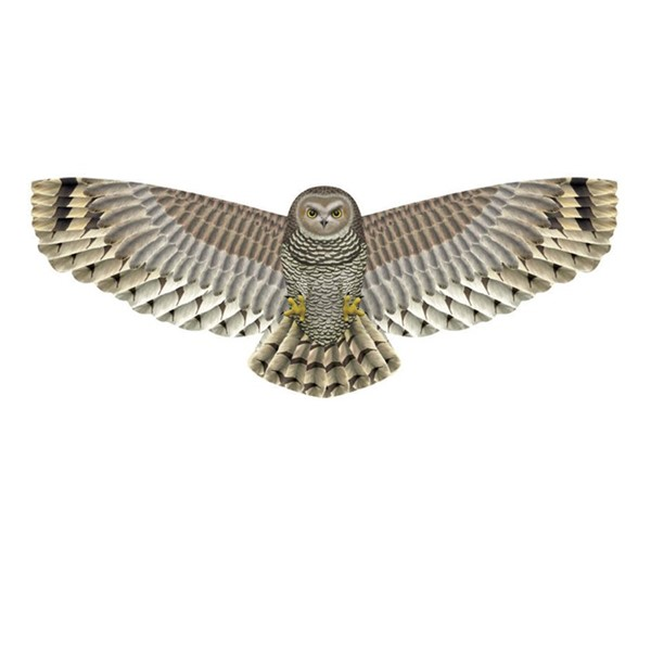 View 3D Supersize Owl