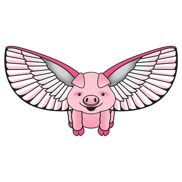 View Flying Pig Supersize 2D Kite